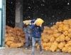 أردوغان يأمر بتوزيع البطاطس والبصل مجاناً على المواطنين