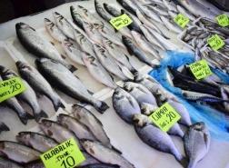 انتهاء موسم الصيد في تركيا الليلة..ودعوات لدعم الصيادين