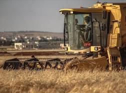 أزمة خبز تلوح بالأفق في سوريا
