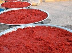العراق أولًا.. تركيا تصدّر معجون الطماطم إلى 99 دولة