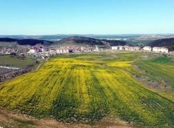 شائعات عن بيل غيتس تقفز بأسعار الأراضي بهذه المنطقة من تركيا