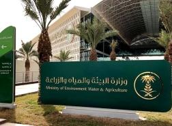 السعودية: فتح التسجيل بـ 44 وظيفة شاغرة بوزارة البيئة