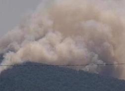 السيطرة على حريق غابات في إحدى جزر الأمراء بإسطنبول