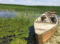صور.. سيارات تسير في قلب بحيرة مهمة بوسط تركيا