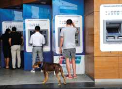 البنوك التركية تزيد صافي أرباحها إلى 48.5 مليار ليرة