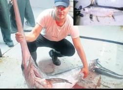 صيد سمكة أبو سيف في مضيق البسفور لأول مرة منذ 50 عامًا (صور)
