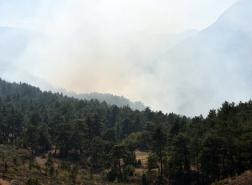 اعتقال 7 روس بسبب حريق غابات في أنطاليا بجنوب تركيا