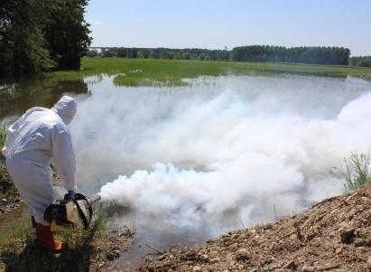 تحذير..أعداد البعوض في تركيا ستزداد خلال الصيف