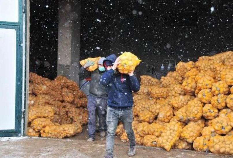 أردوغان أمر بشراء البصل والبطاطا والرز من المزارعين